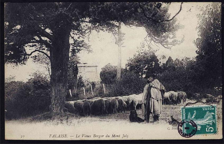 le vieux berger du Mont Joly